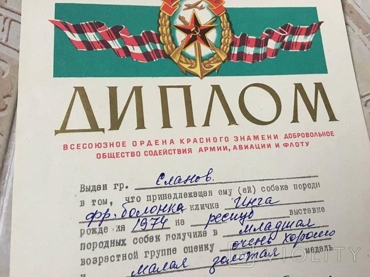 Диплом 1975г выдан хозяину собаки на выставке СССР, фото №4