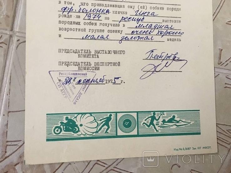 Диплом 1975г выдан хозяину собаки на выставке СССР, фото №6