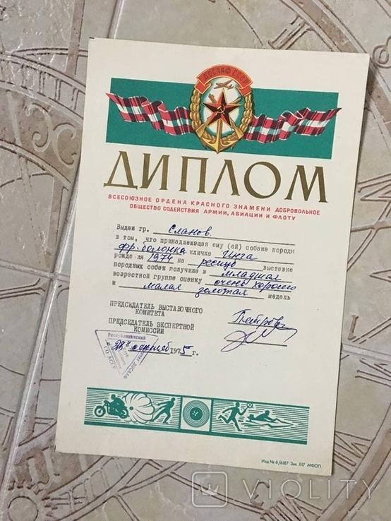 Диплом 1975г выдан хозяину собаки на выставке СССР, фото №9