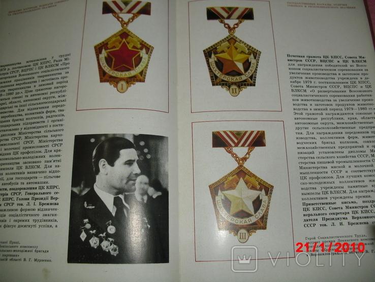 Книга о всех трудовых наградах, фото №4