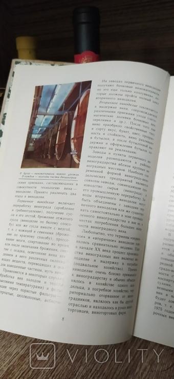 Рассказы о Вине, фото №6