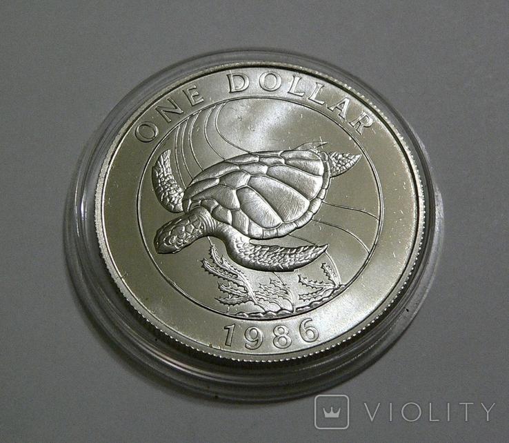Бермудские Острова, 1 доллар,1986 - Всемирный фонд дикой природы. ЧЕРЕПАХА - серебро, фото №3