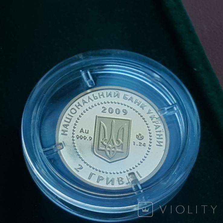 Скіфське золото. Кабан 2 гривні 2009, фото №7