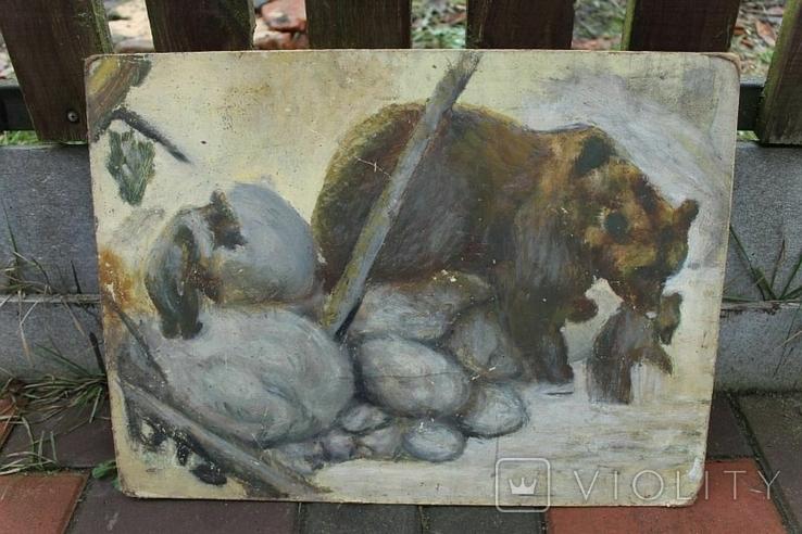 Медведица с малышами, фото №2