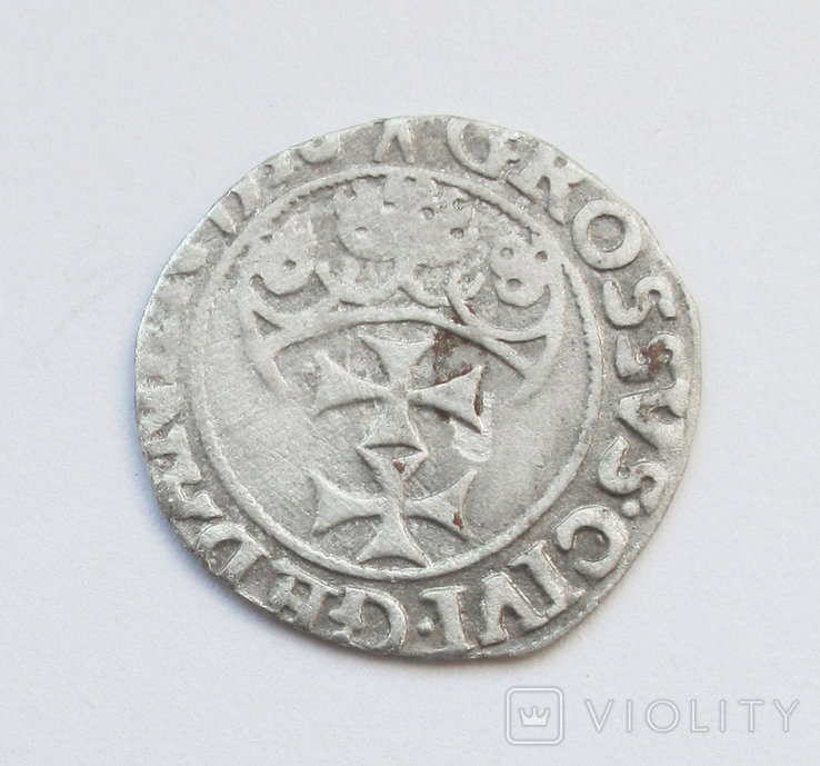 Грош 1538г, Сигизмунд I Старый , г. Гданьск, фото №3