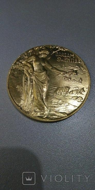 Медаль за трудолюбие Балтийское общество сельских хозяйств копия, фото №2