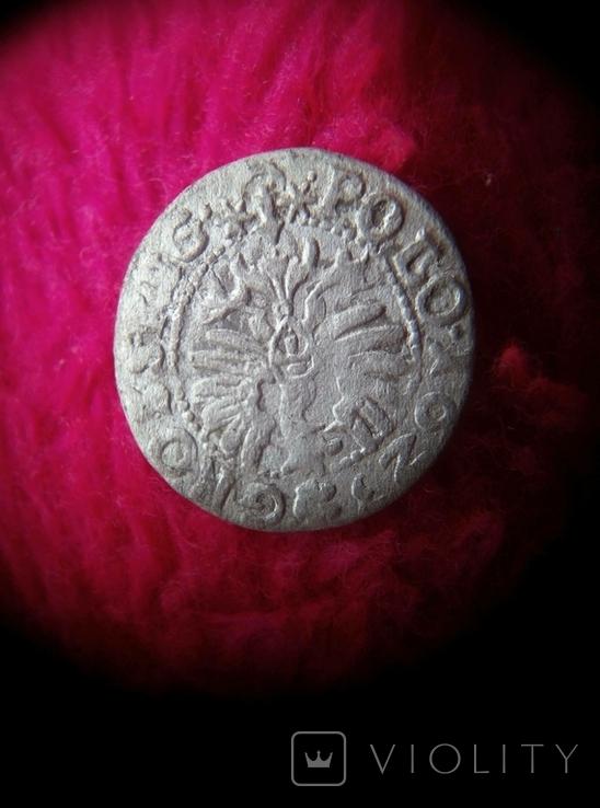 Коронный грош 1623 года. Сигизмунд ІІІ Ваза, фото №7