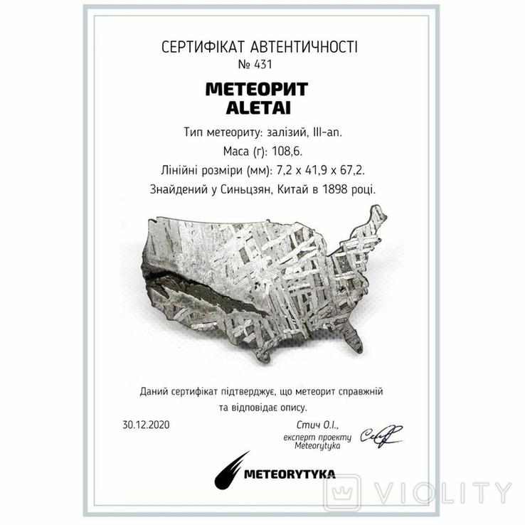 Залізний метеорит Aletai, карта США USA, 108,6 грам, із сертифікатом автентичності, фото №3