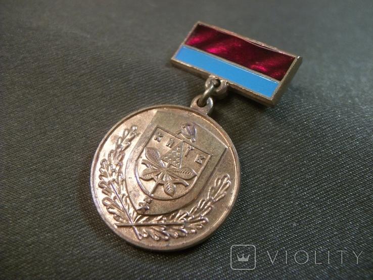21Я1 Медаль. За образцовое благоустройство города Киева, УССР, Киев, КЮЗ, фото №2