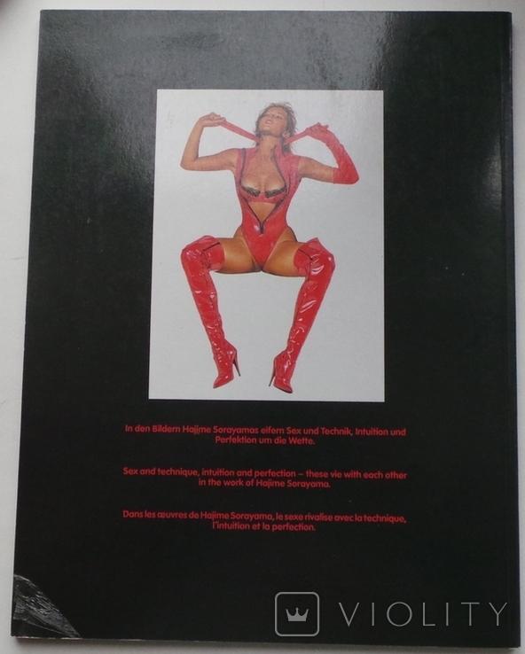 Каталог картин Хаяме Сараяма, фото №3