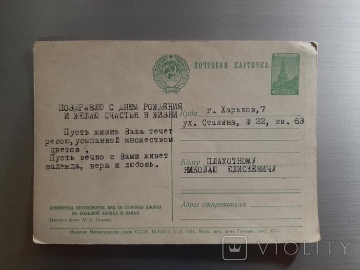 1954г. Петродворец, фото №3