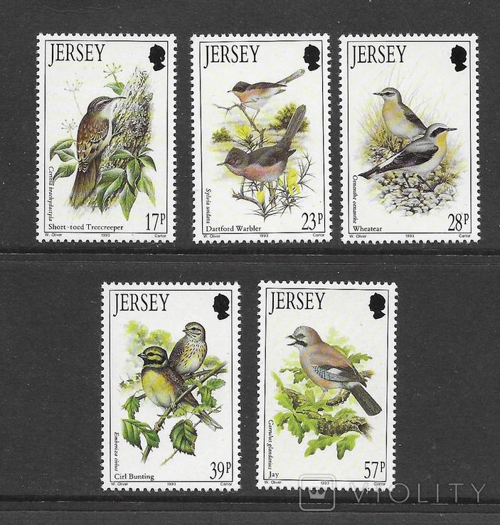 Джерси 1993 птицы