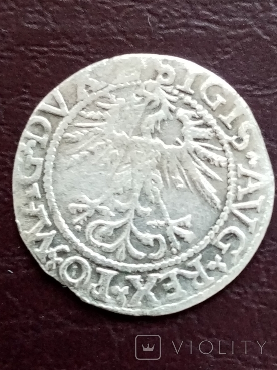Полугрош 1562 Сигизмунд, фото №4