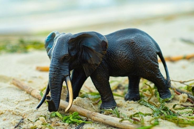 Слон - бронза, фото №3