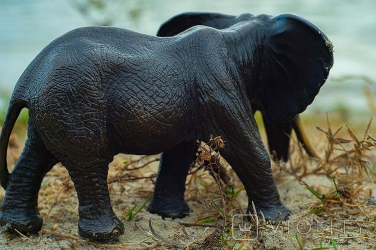 Слон - бронза, фото №8