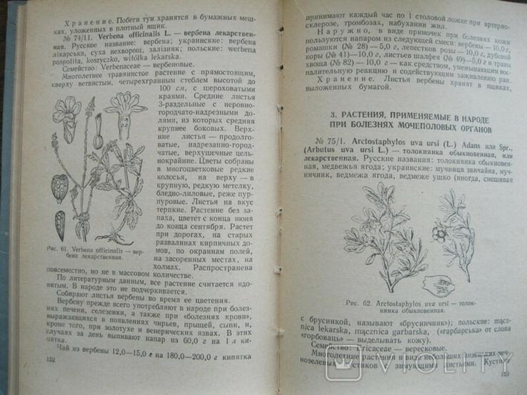 Лекарственные растения и способы их приминения в народе 1960г., фото №6