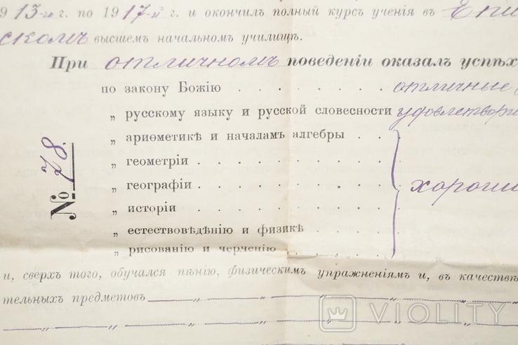 Аттестат Брежнева 1917 год.(Водяные знаки)., фото №5