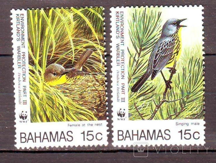Багамы**. 1995г. Птицы