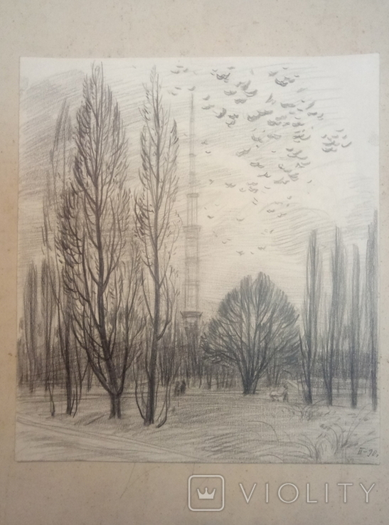 Киев парк возле теле-вышки.Бабкова., фото №3