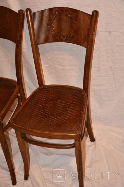 Венские старинные стулья.Яковъ и Іосифъ Конъ, фото №3
