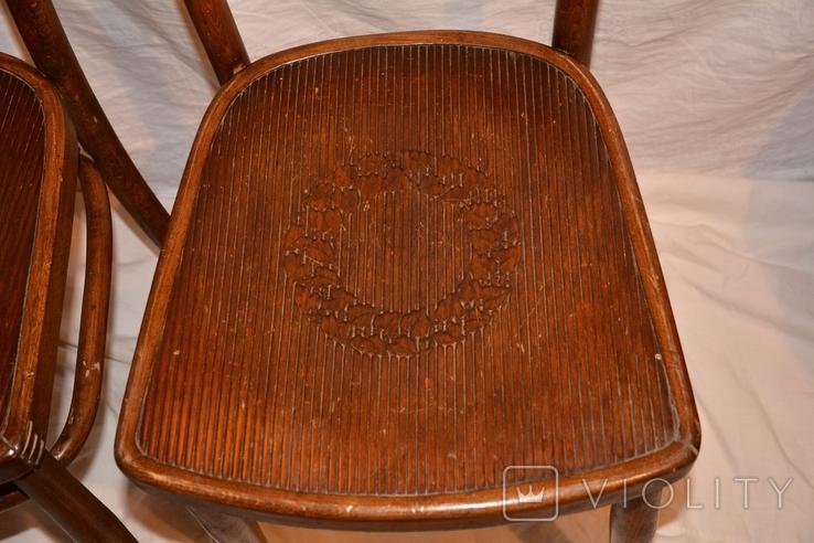 Венские старинные стулья.Яковъ и Іосифъ Конъ, фото №4