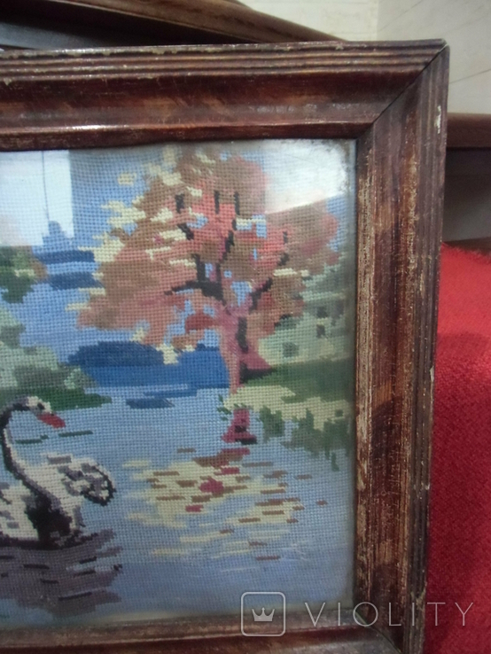 Лебедь плавает в озере, фото №4