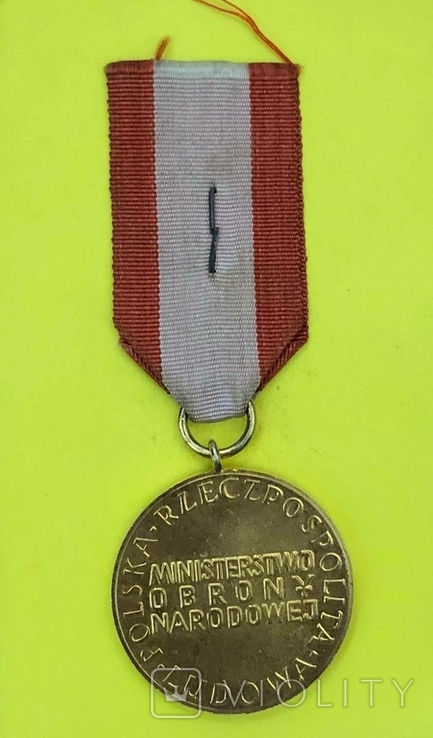 Золотая медаль За заслуги при защите страны, фото №3