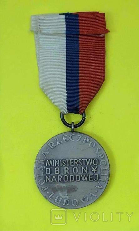 Серебряная медаль За заслуги при защите страны, фото №3