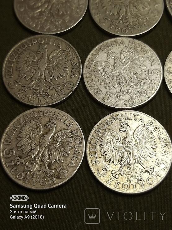 5 і 10 злотих ,Польща,срібло,1932,33,34., фото №7