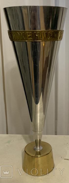 Кубок за спортивное достижение, фото №3