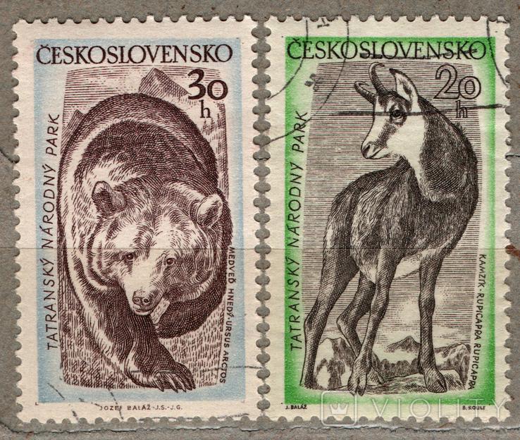 Чехословакия. Животные. 1957 г., фото №2