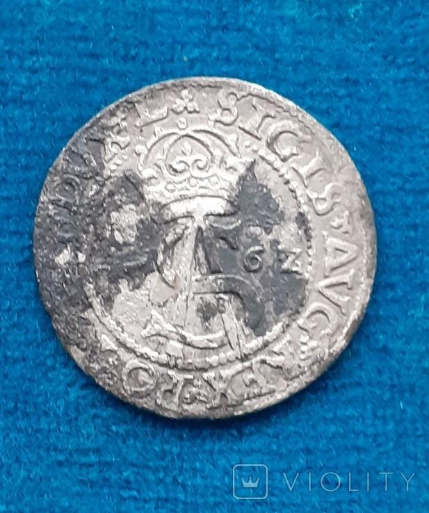 Трояк Сігізмунда Августа, 1562р., фото №2