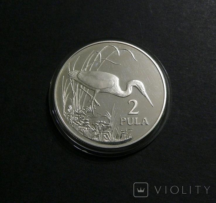 Ботсвана, 2 пула 1986 - ТИХООКЕАНСКАЯ БЕЛАЯ ЦАПЛЯ - серебро, фото №2