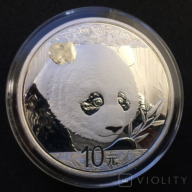 Панда Китай Chinese Panda 2018, фото №4