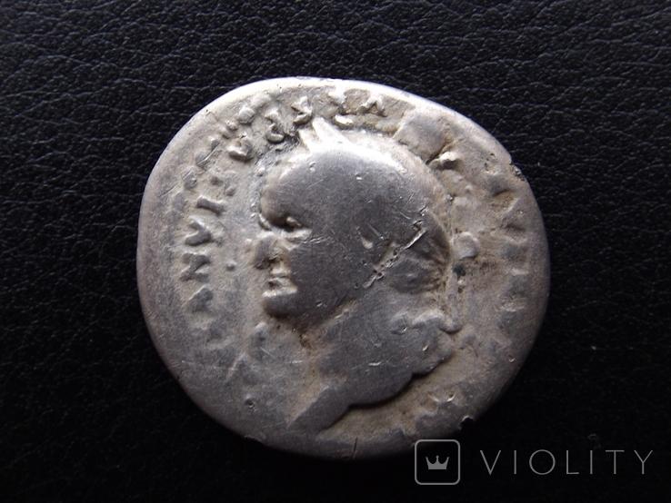 Веспасіан ( портрет в ліво ), фото №6