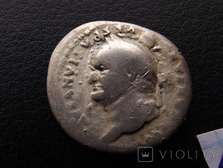 Веспасіан ( портрет в ліво ), фото №7