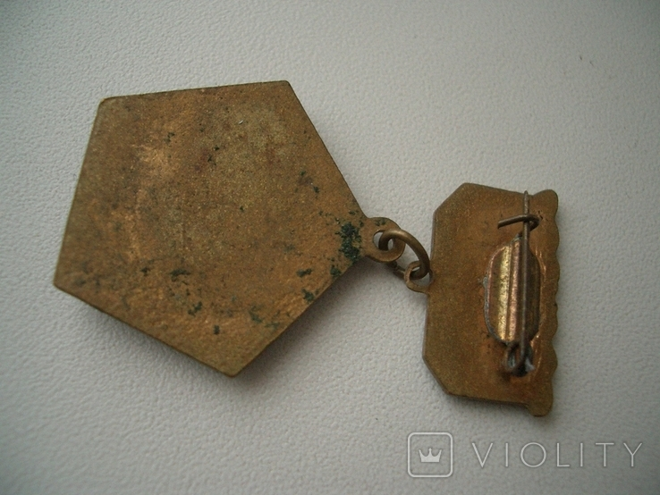 Знак Чемпион Авангард УССР гребля, фото №4