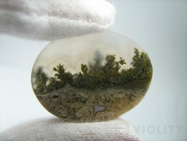 Натуральный пейзажный моховый агат. Индонезия. 164, фото №5