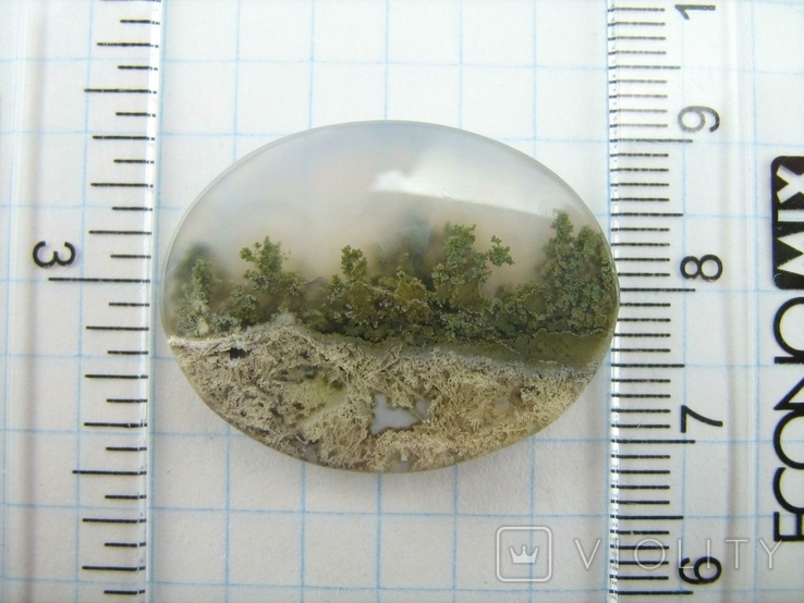 Натуральный пейзажный моховый агат. Индонезия. 164, фото №6