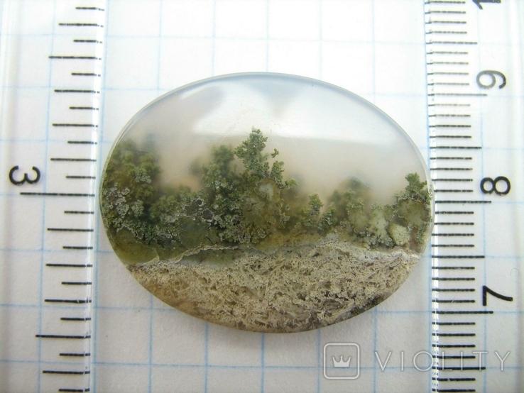 Натуральный пейзажный моховый агат. Индонезия. 164, фото №7