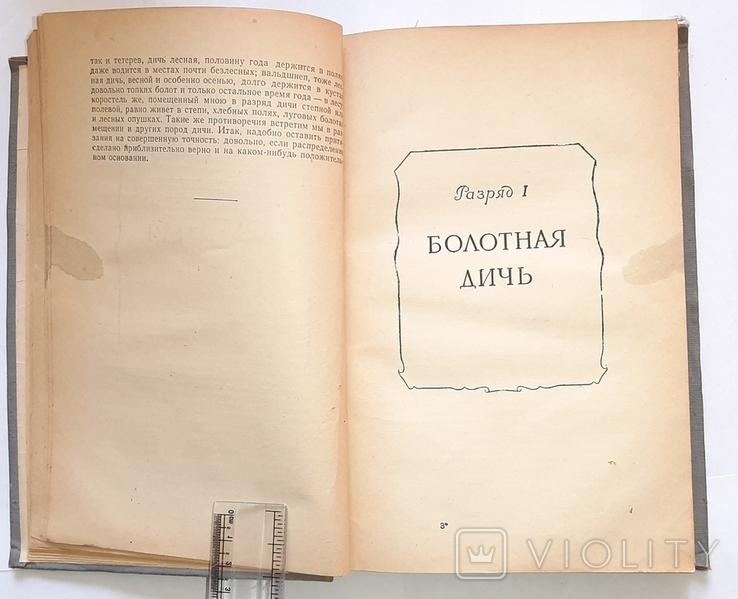 Записки ружейного охотника. С.Т. Аксаков. 1953 год, фото №5