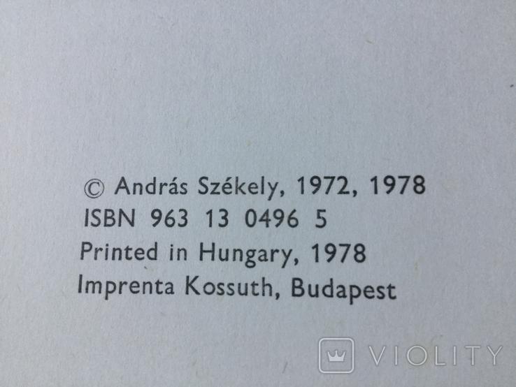 Книга по искусству 1978 год la pintura Espanola Венгрия, фото №4