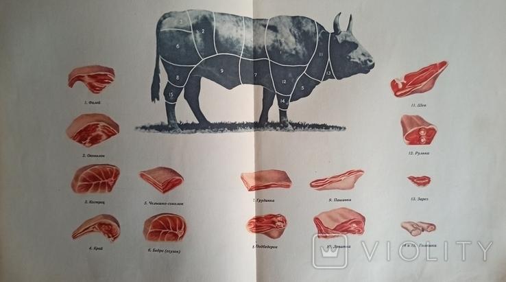 Книга о вкусной и здоровой пище. 1952 год., фото №9