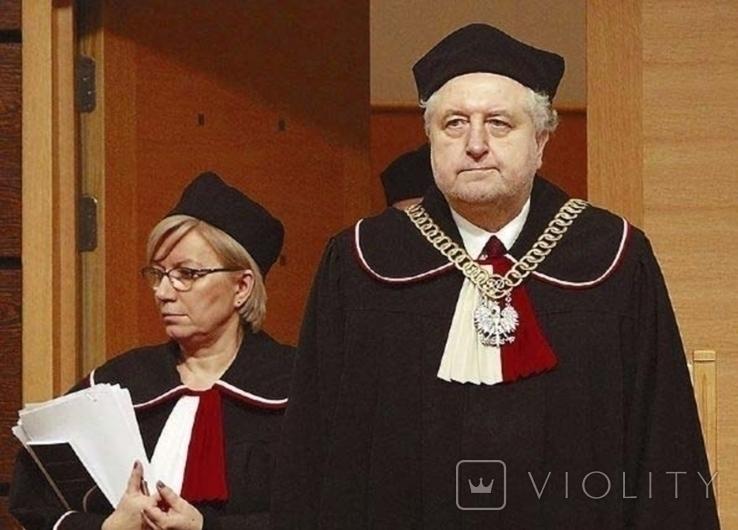 Должностной нагрудный знак судьи 19-20ст., фото №4