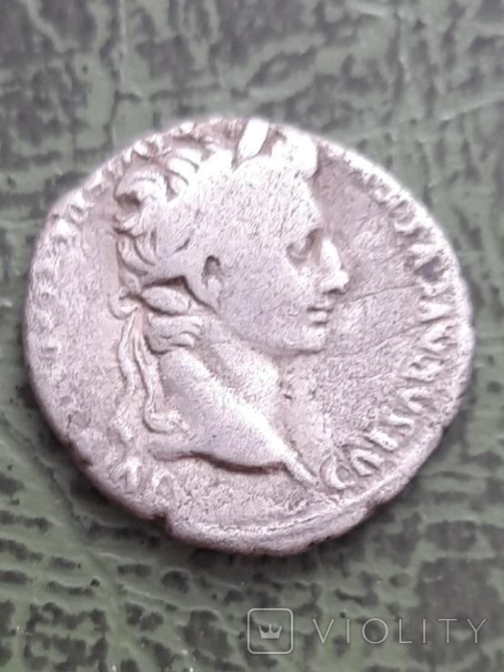 Динарій Октавіан Август 63 до н.е-14 н.е, фото №2