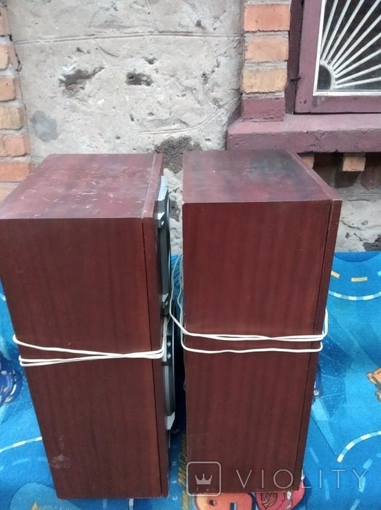 Колонки Амфитон АС35-018, фото №5