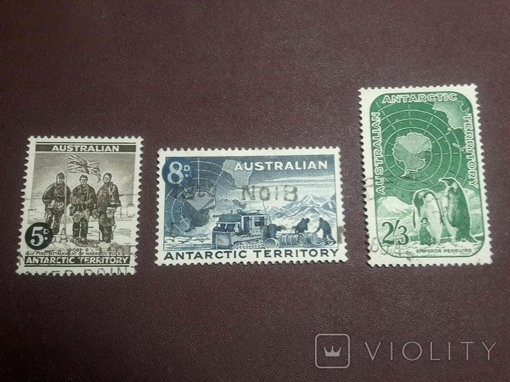 Серия марок 1959 г. Антарктические территории Австралии, фото №2