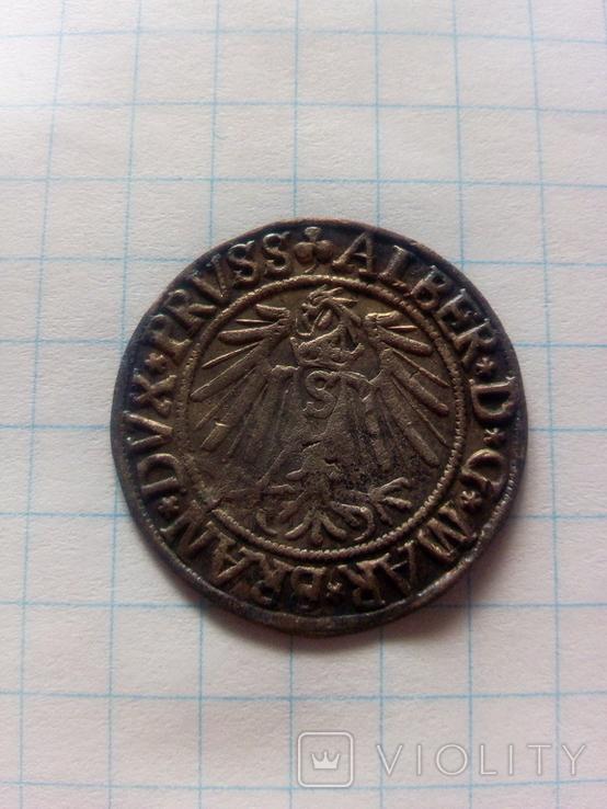 Грошен 1541 Альбрехт Герцогство Прусія, фото №5