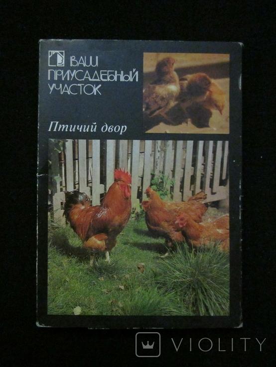 Комплект открыток СССР. Птичий двор. 1989г., фото №2