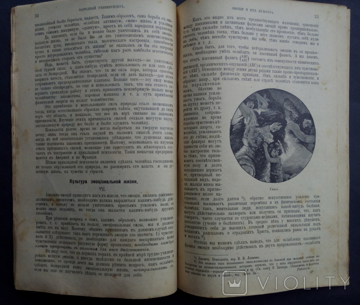 Эмоции и их культура 1907 Психология с рисунками, фото №10
